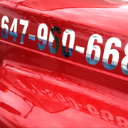 Advertising Vehicle Lettering